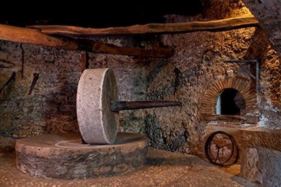 Museo dell'olio Castelnuovo